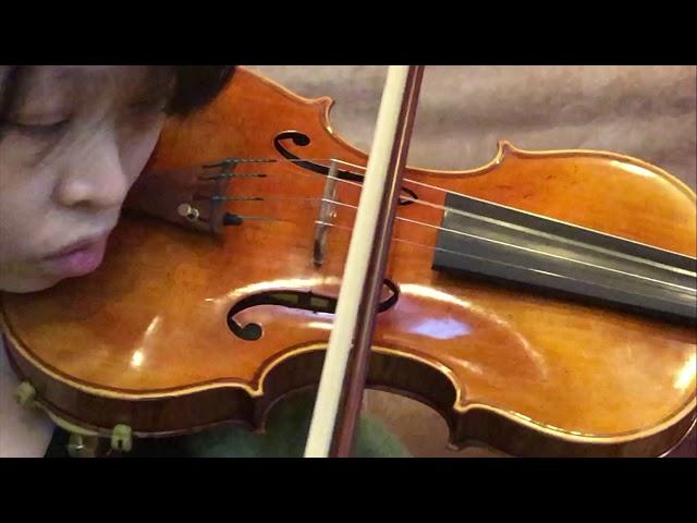 Ifstrings Private Stock VSA #154 Guarneri del Gesu 1742
