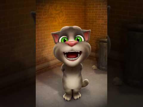 Choti Katre He Ajj Kal Tom Funny Video (fun Masti Maja Education)