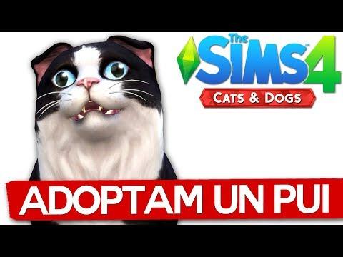 Adoptam un pui de PISICA! Sims 4 Pets
