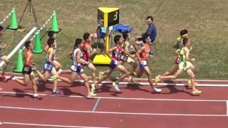 H29千葉県総体陸上大会 共通男子1500m決勝 thumbnail