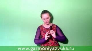 Первый ВИДЕО УРОК по игре на флейте Вистл в До