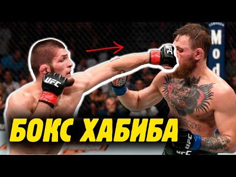 У ХАБИБА ЕСТЬ БОКС?! Что тренеру по боксу Роме Михайлову понравилось в ударке Хабиба?