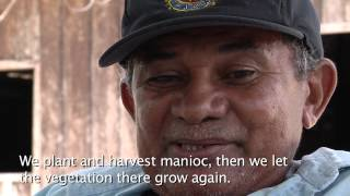 Slash & Burn | Part 1: Why Amazonian farmers use fire