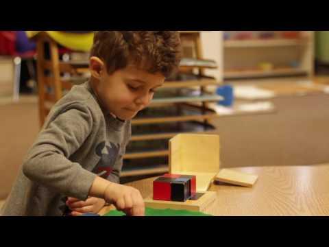 Council Oak Montessori School Trinomial Cube