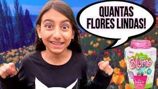 VASINHOS MÁGICOS QUE NASCEM BONECAS NO LUGAR DAS FLORES - ( Blume ) - Julia Moraes