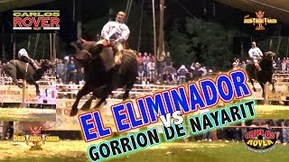 SIMPLEMENTE EspECTaCULaR***EL ELIMINADOR VS GORRION DE NAYARIT