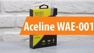 Розпакування Aceline WAE-001 / Unboxing Aceline WAE-001