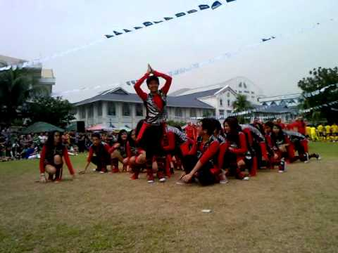 SENIOR VIKINGS \m/