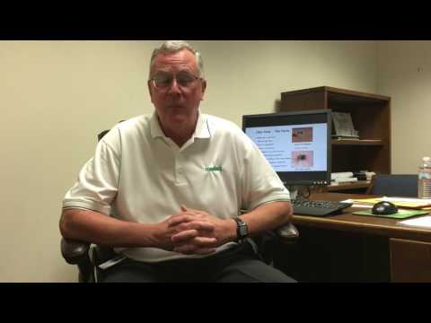 Terminix Twitter Chat with Dr. Stan Cope #MosquitoWeekChat
