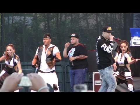 Daddy Yankee- Limbo-  En Vivo Desde Busch Gardens. Tampa, Fl. Marzo-08-2014