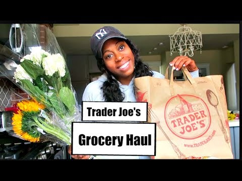 TRADER JOE'S HAUL &  LIFE UPDATES |  Britt's Space |
