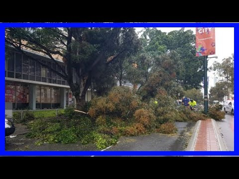 Breaking News | 100km/h winds and thunderstorms to hit perth and southern wa for second day
