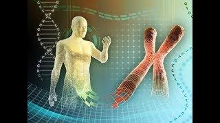 Лекарство от старости. Генетика (документальный фильм телеканала Россия)