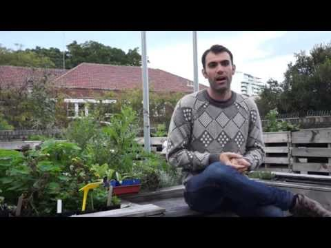 Growing organic produce for the disadvantaged