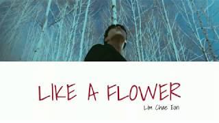 Cover images Lim Chae Eon - 화인 (Like a Flower) Lyrics