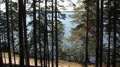 Tolvajärven taistelu (1939)