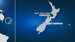Alerta De Tsunami Tras Un Terremoto De Magnitud 7,8 En Nueva Zelanda