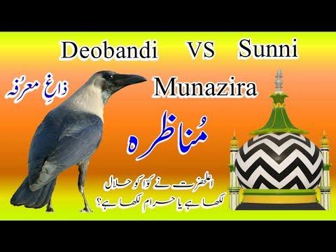 New Munazra 2018|| Ala hazrat Ne Kawwa Halal Likha Hai Kya? By Maulana Sufi Kaleem Razvi hanfi||