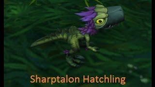 Sharptalon Hatchling/ Falcosaur Mount Quest