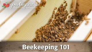 Beekeeping for Beginners -- Hive Set Up(Ever thought about keeping bees? Bees are great garden helpers that will improve yields of gardens and orchards, and as a bonus, they'll pay you back with ..., 2013-04-19T17:15:23.000Z)