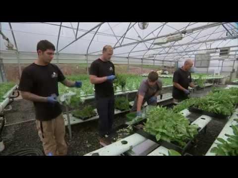 Farmer Veterans - America's Heartland