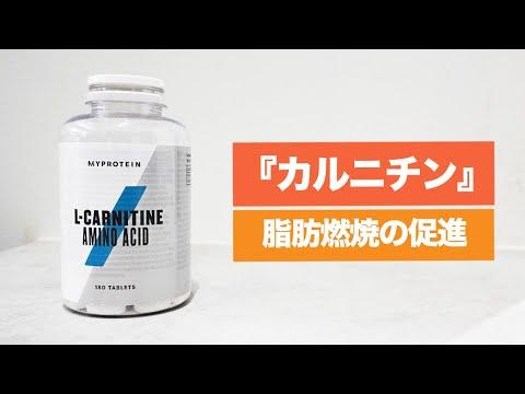 【3分間サプリ講座】『カルニチン』の摂取量・タイミング・脂肪燃焼効果について