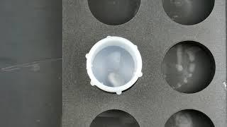 오디랩 (ODALB) 멀티자석교반기