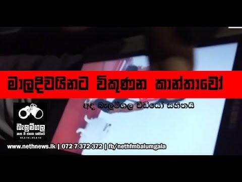 2016 11 17 Balumgala Maldives Prostitution