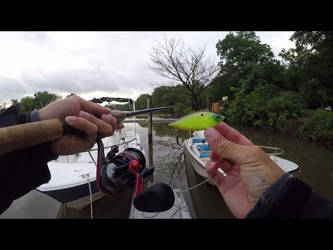 Pit Stop Fishing On The Potomac River