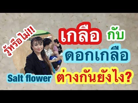 EP 359 รู้หรือไม่!! เกลือกับดอกเกลือต่างกันยังไง | Salt flower | พี่เล็ก Lek Amazing