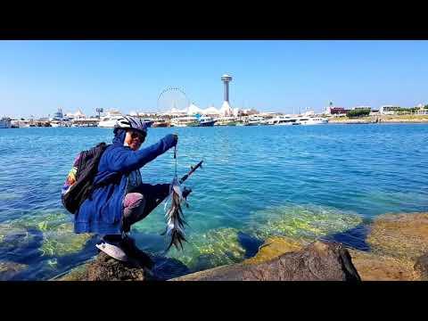 #FISHING #ROD FISHING TIME | #FISHING_06 2020