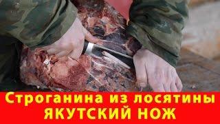 Строганина из лосятины и якутский нож. Компания Русский булат. Обзор. Как выбрать. Купить нож(, 2017-03-18T18:27:42.000Z)