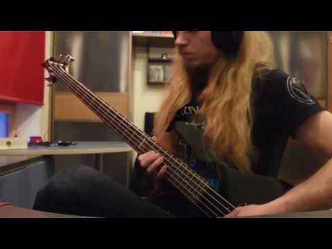 Insomnium - Shadows of the Dying Sun (bass cover)