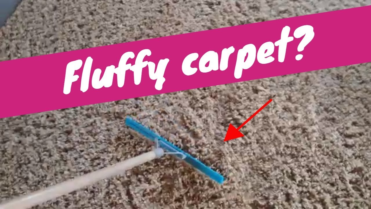 How To Fluff Carpet Rendall S