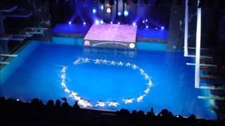 шоу олимпийских чемпионов  21.12.12