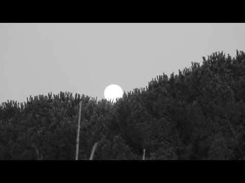 Test Luna 55 200 Nikon D3100 Youtube