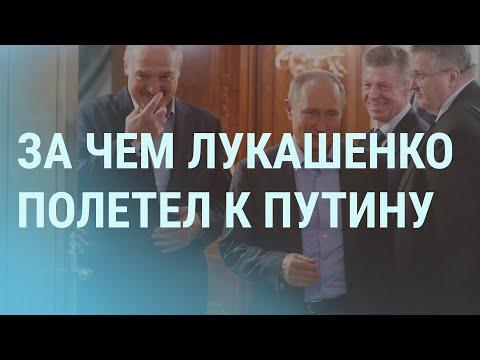 Зачем Навальный в суде цитировал Гарри Поттера | УТРО | 22.02.21