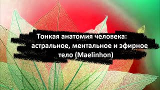 Тонкое тело: ментальное, астральное и глупое (Maelinhon)