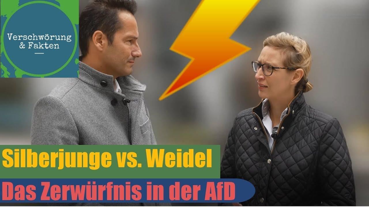 SILBERJUNGE Gegen WEIDEL Das Zerwürfnis In Der AfD Thorsten