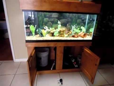 75 gallon Fresh water Aquarium with Fluval fx5 canister filt