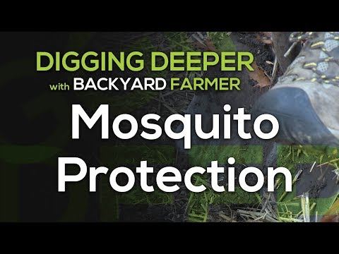Digging Deeper Mosquito Protection