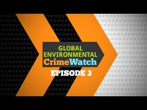 Episode 3: Global Environmental Crime Watch
