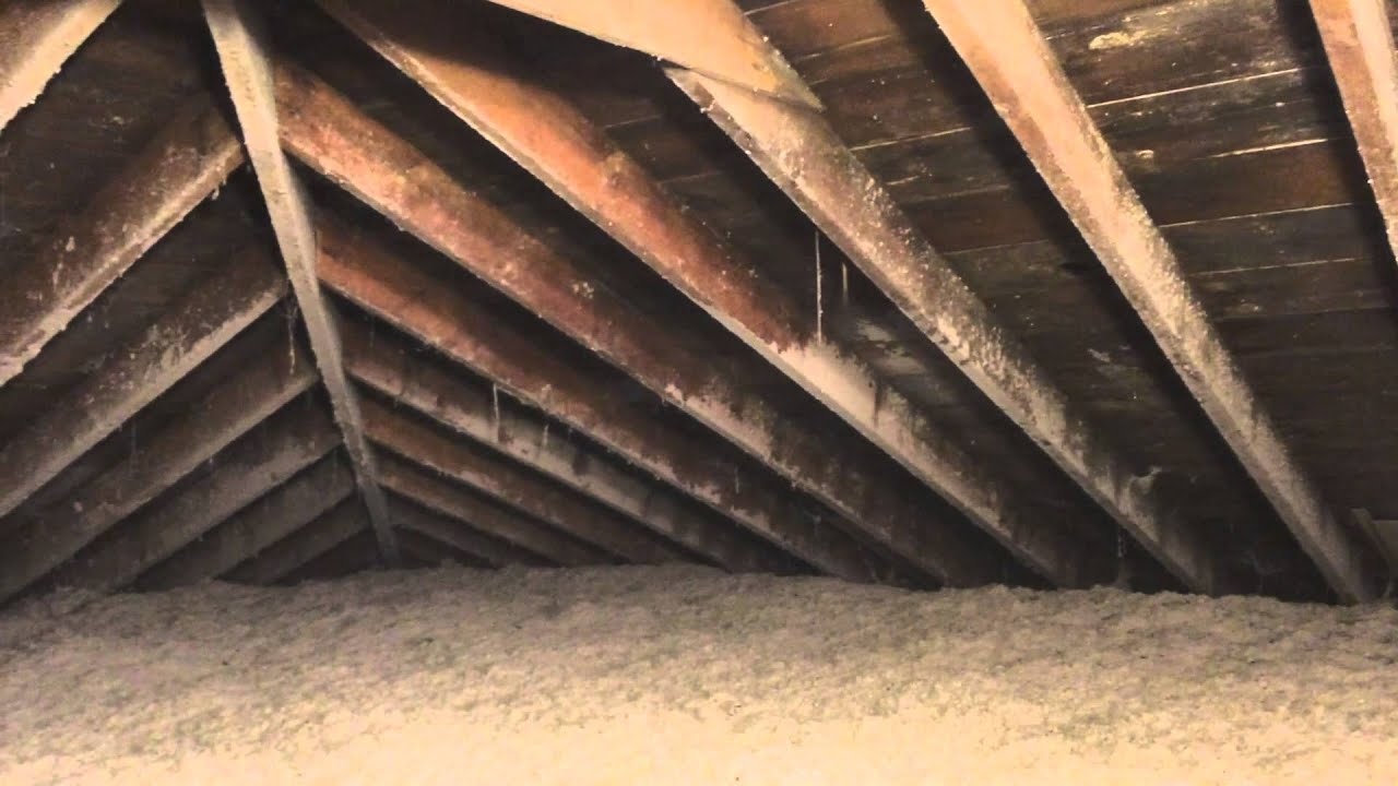 Before After Attic Mold Removal Frankfort Il Remediation