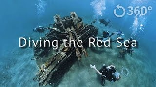 Diving the Red Sea - Underwater 360 Video thumbnail