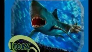 ИЗРАИЛЬ !!! Отдых на Красном море !!!! EILAT с Profi Tours(, 2010-06-25T19:29:27.000Z)