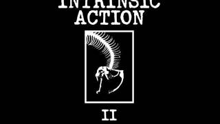 Intrinsic Action - Monitor