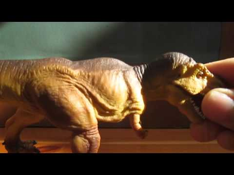Review 82: Safari Ltd Tyrannosaurus