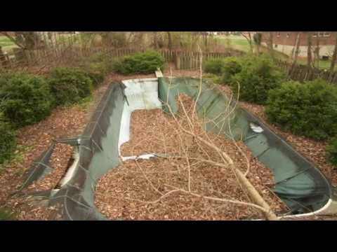 Pool Doctor LLC - Restoration 2017