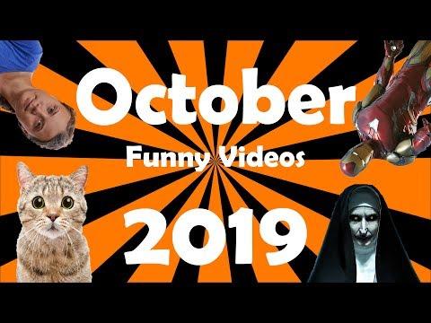 funny-videos-of-october-2019