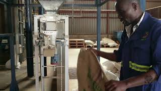 Coffee Bagging - Step 8 (Factory) Coffee Value Addition Training